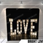 Bright love pillow G