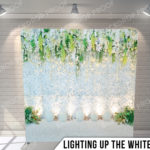 PILLOW_LIGHTINGUPTHEWHITES_G