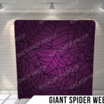 Pillow_GIANTSPIDERWEB_G