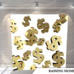 raining money pillow G